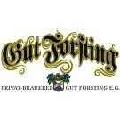 Gut Forsting Radler - 12 x 0,5 l